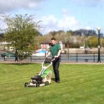 Lawn Mowing & Grass Cutting Services